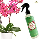 Orchid Spray Fertilizer - Plant Food Mist - Enhances Growth, Provides Food, Nutrients and Moisture - No Mixing or Diluting Needed, Ready to Use Formula - for Indoor Potted Plants & Terrariums Photo, best price $7.95 new 2020