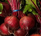Beet Detroit Dark Red Heirloom, Container Friendly, 59 Days to Harvest, 100 Seeds Photo, best price $4.99 new 2019