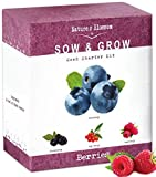 Nature's Blossom Fruit Growing Kit. The Beginner's Set to Grow 4 Types of Berries from Seed - Raspberries ; Blueberries ; Goji Berry ; Blackberries. Contains Planting Pots, Soil & Gardening Guide Photo, best price $25.99 new 2019