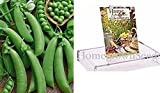 Homegrown Pea Seeds, 130 Seeds, Organic Super Snappy Pea Photo, best price $5.01 new 2019