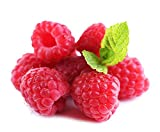 2000Pcs Red Raspberry Seeds Fruit Plant Juicy Delicious Rubus Idaeus Bush BD108 Photo, best price $10.99 new 2019