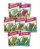USDA Organic Culinary Sprouting Seeds (Set of 7 Varieties) – Fenugreek, Broccoli, Radish, Cabbage, Clover, Mung and Mustard & Includes Instructions – Home Grown, Organic Nutrition by Zziggysgal Photo, best price $15.99 new 2018
