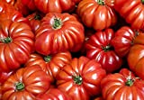 30+ ORGANICALLY GROWN Costoluto Genovese Pomodoro Tomato Seeds, Heirloom NON-GMO, Low Acid, Indeterminate, Open-Pollinated, Productive, From USA Photo, best price $2.59 new 2018