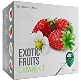 Exotic Fruits Growing Kit - Everything Included to Easily Grow 4 Unique Fruits - Strawberries, Goji Berries, Honeydew, Watermelon + Moisture Meter Photo, best price $34.99 new 2019