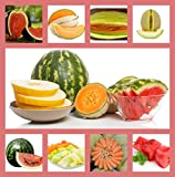 Heirloom Fruit Seeds- Non Hybrid- Real Survival Seeds. Honeydew Green Melon, Banana Melon, Honey Rock Cantaloupe, Watermelon Crimson Sweet, Sugar Baby Watermelon Seeds, Hales Best Jumbo Melon,Non GMO Photo, best price $14.99 new 2018