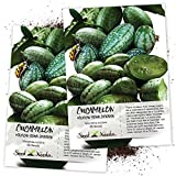 Seed Needs, Cucamelon/Mexican Sour Gherkin (Melothria scobra) Twin Pack of 65 Seeds Each Photo, best price $8.85 new 2019