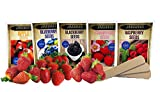 Fruit Combo Pack Raspberry, BlackBerry, Blueberry, Strawberry, Apple (Organic) 975+ Seeds UPC 600188190564 & 3 Free Packs of Strawberry Seeds & 4 Plant Markers Photo, best price $7.99 new 2019