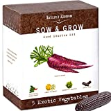 Exotic Vegetables Growing Kit - 5 Unique Plants to Grow From Seed: Purple Carrots, Blue Corn, Yellow Cucumber, Rainbow Chard & Broccoli. Garden Gift for Children - Fun Gardening Set For Boys & Girls Photo, best price $29.99 new 2018