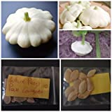 White Patty Pan Courgette ~10 Top Quality Seeds - Amazing Variety! Photo, best price $7.10 new 2018