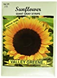 Set of 100 Flower Seed Packets! Flower Seeds in Bulk (100, Sunflower) Photo, best price $59.99 new 2019