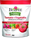 Burpee 99967 Organic Tomato and Vegetable Granular Plant Food, 4 lb Photo, best price $14.54 new 2019