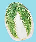 Blues Hybrid Cabbage Seeds - Recommended for summer to early winter harvest!!(25 - Seeds) Photo, best price $2.99 new 2018