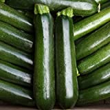 Courgette - Midnight - 15 Seeds Photo, best price $2.03 new 2018