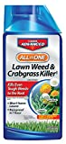 Bayer Advanced 704140 All-in-One Lawn Weed and Crabgrass Killer Concentrate, 32 Ounce Photo, best price $13.49 new 2018