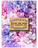 Darling Mix Sweet Pea Certified 35 Seed UPC 600188190441 + Free Pack Mixed Snapdragons Photo, best price $5.25 new 2018