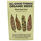 Glass Gem Corn Seeds (~50) by All Good Things Organic Seeds: Certified Organic, Non-GMO, Heirloom, Open Pollinated Seeds from the United States Photo, best price $4.99 new 2019