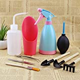 10pcs Succulent Miniature Plants Potted Plant Garden Hand tools set,Include trowel?cultivator?transplanter?Sprayer?Sharp Mouth Watering Can?Soil Cup?Air-blowing?Hairbrush?Curved and Straight Tweezers Photo, best price $23.69 new 2018