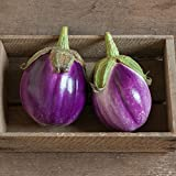 David's Garden Seeds Eggplant Rosa Bianca AZ2605 (Purple) 50 Non-GMO, Organic Heirloom Seeds Photo, best price $7.95 new 2019