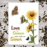 Set of 25 Sunflower Seed Packet Favors (F06) Love Is Grown Great for Weddings (Autumn Beauty Sunflower Seeds) Photo, best price $24.50 new 2020