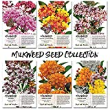 Seed Needs Milkweed Seed Collection (6 Individual Seed Packets) Open Pollinated Seeds Photo, best price $21.90 new 2019