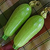 Courgette - Clarion - 15 Seeds Photo, best price $1.39 new 2018
