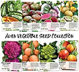 Alien Vegetable Seed Collection (8 Individual Seed Packets) Non-GMO Seeds by Seed Needs Photo, best price $12.50 new 2019
