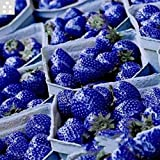 Hot selling 100pcs/bag blue strawberry rare fruit vegetable seed bonsai plant home garden free shipping Photo, best price $0.46 new 2018