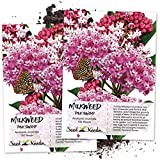 Seed Needs, Pink Swamp Milkweed (Asclepias incarnata) Twin Pack of 100 Seeds Each Untreated Photo, best price $7.30 new 2020