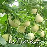 200pcs Sugar Honey Melon Seeds Super Sweet White Melon Fruit Seeds Photo, best price $4.74 new 2019