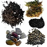Succulent Planter Soil Kit - Total DIY Terrarium Supplies -Terrarium Kit for Succulent or Catcus - Create your own Terrarium With These Top Quality Supplies - Great For Fairy Gardens (Small) Photo, best price $14.95 new 2019