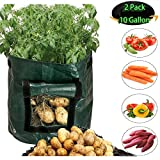 Grow Bags 2 Pack 10 Gallon Garden Potato Grow Bags Breathable growing bags with Flap and Handles Waterproof Vegetable planting Planter Bag Fabric plant Pot for Onion, Potato, Flower, Carrot, Tomato Photo, best price $25.99 new 2018