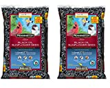 Pennington Select Black Oil Sunflower Seed Wild Bird Feed, 20 lbs (2 Pack) Photo, best price $28.95 new 2020